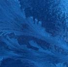 Naturbilder Cornelia Paul